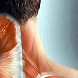 Внутренние органы боль в пояснице