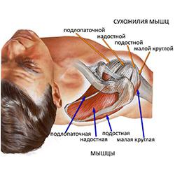 Болит и хрустит плечевой сустав как лечить препарат матрикс для суставов инструкция