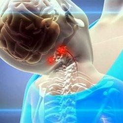 Болит спина в области лопаток: ниже, выше, между, под лопатками